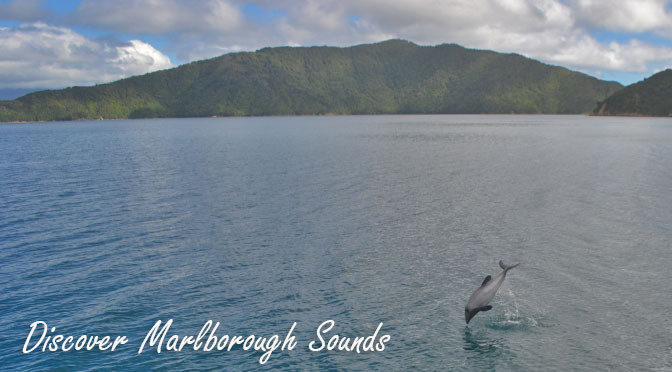 Outdoor activities in the Marlborough Sounds