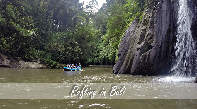 Rafting in the heart of Bali's rice fields