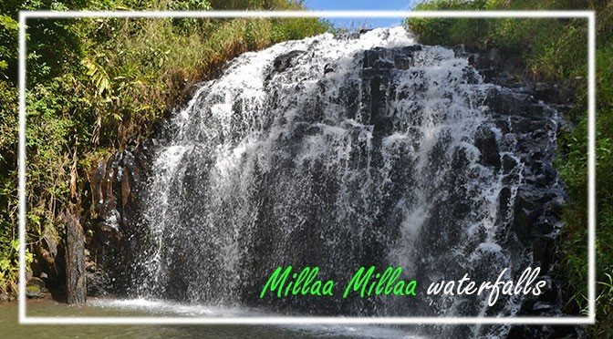 Millaa Millaa, the waterfall's land