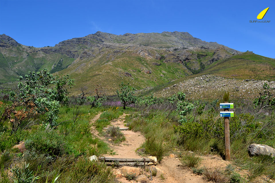 BEST-HIKES-SOUTH-AFRICA