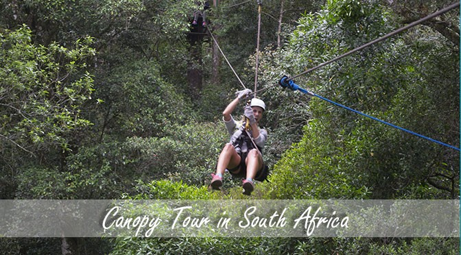 Canopy tour in Tsitsikama