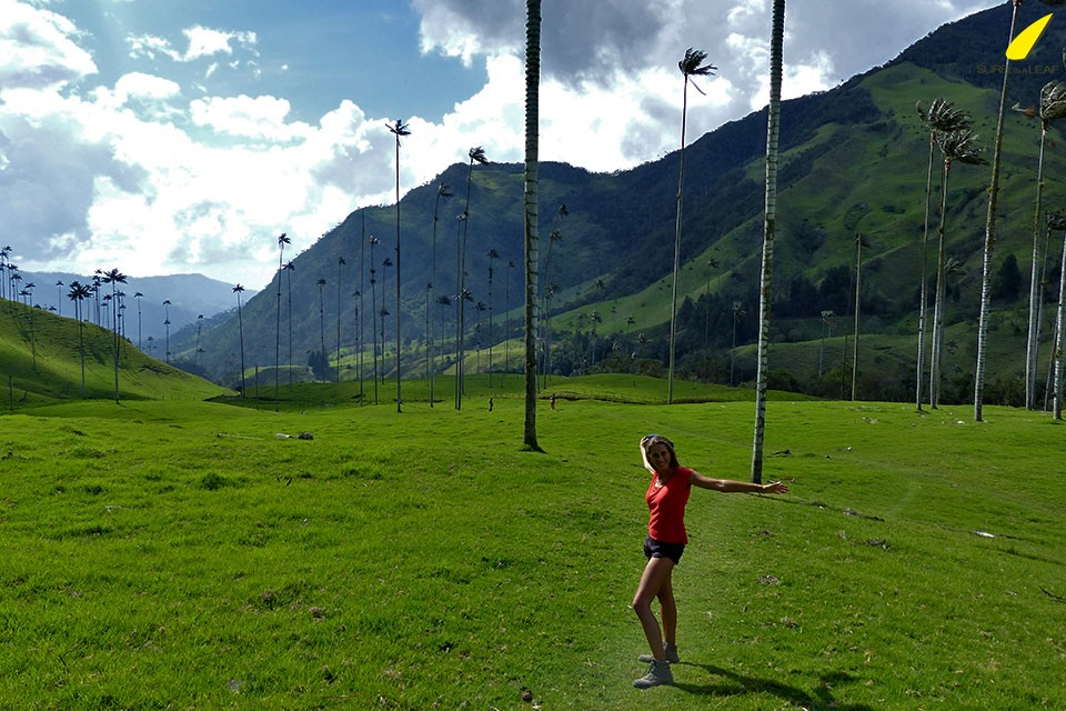 hike-cocora-valley