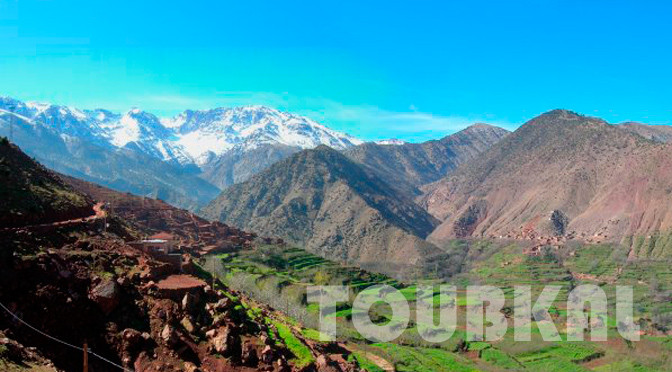 Mount Toubkal Ascension