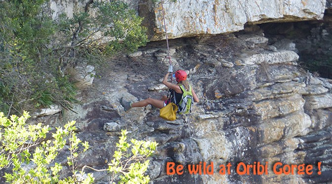 Adrenaline activities in Oribi Gorge